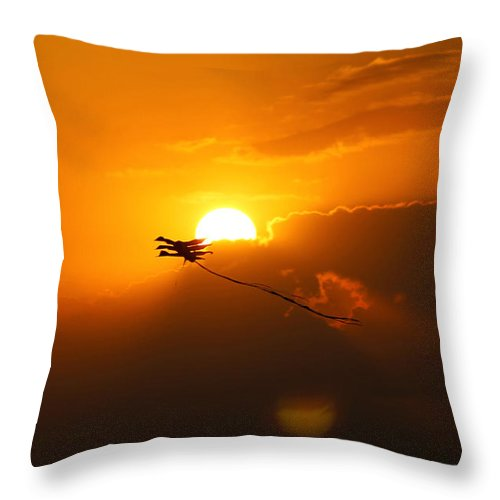 Sun Throw Pillow featuring the photograph Into The Sun by Robin Lewis