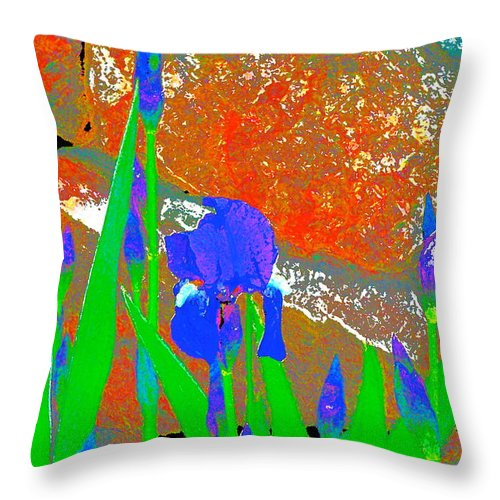 Flowers Throw Pillow featuring the photograph Iris 31 by Pamela Cooper