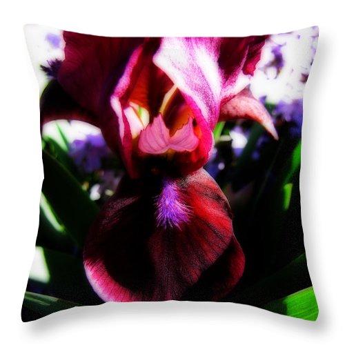 Flower Throw Pillow featuring the photograph Iris Inner Beauty by Ms Judi