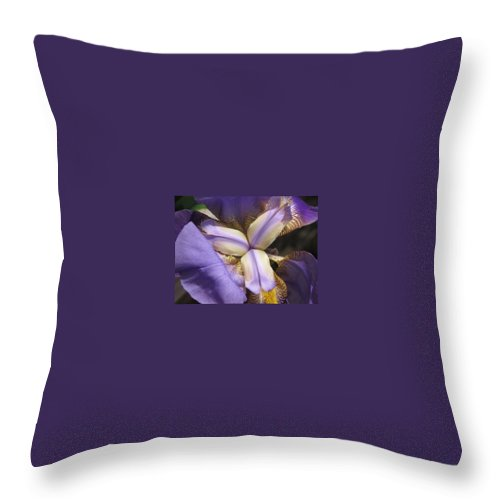 Yellow Throw Pillow featuring the photograph Iris Smiles by Michele Nelson