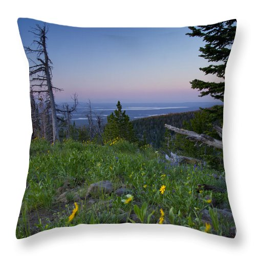 Island Park Reservoir Throw Pillow featuring the photograph Island Park by Idaho Scenic Images Linda Lantzy