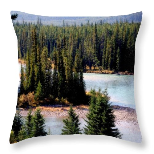 Water Throw Pillow featuring the photograph Islands In The Stream by Karen Wiles