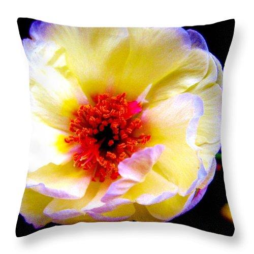 Garden Throw Pillow featuring the photograph Italian Rose by Susan Carella