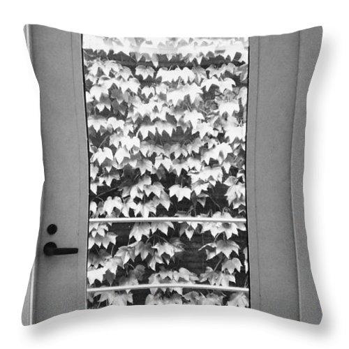 Ivy Throw Pillow featuring the photograph Ivy Door by Anna Villarreal Garbis