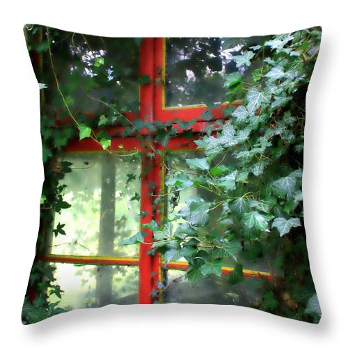 Window Throw Pillow featuring the photograph Ivy Embrace by Carol Groenen