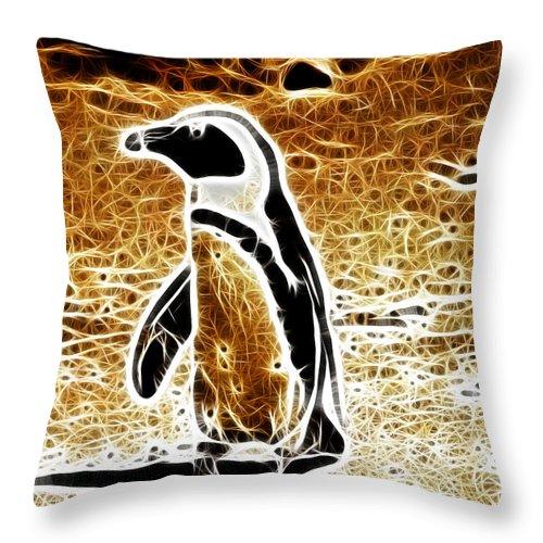 Cape Penguin Throw Pillow featuring the photograph Jackass Penguin by Douglas Barnard