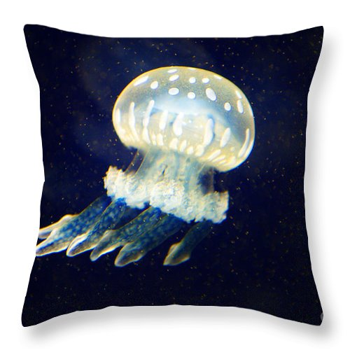 Jelly Fish Throw Pillow featuring the photograph Jelly Fish by Randy Harris