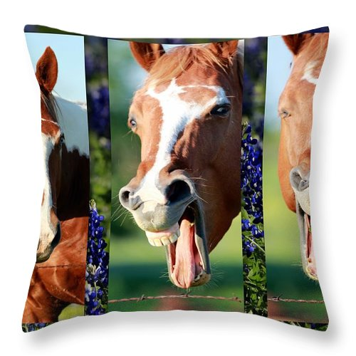 Horse Throw Pillow featuring the photograph Jest by Elizabeth Hart