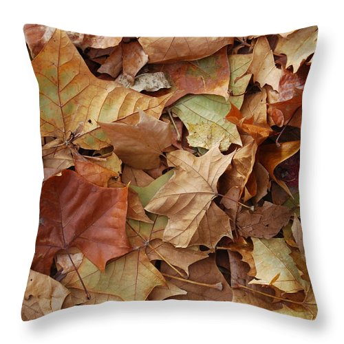 Nature Throw Pillow featuring the photograph Jump In by Michael L Gentile