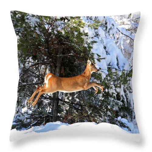 Deer Throw Pillow featuring the photograph Jumper by Lloyd Alexander