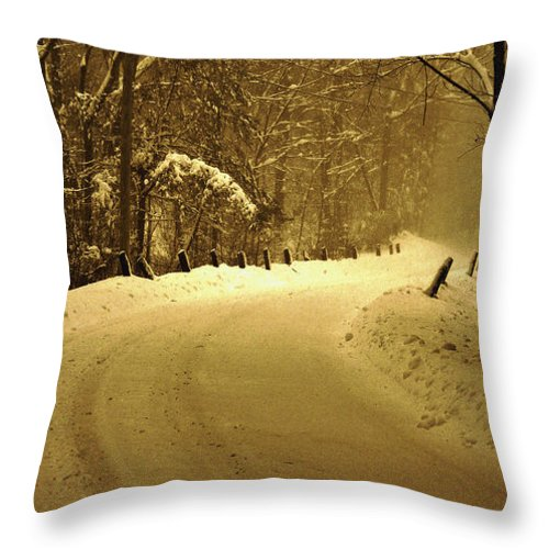 Snow Throw Pillow featuring the photograph Just Around The Bend by Mary Anne Williams