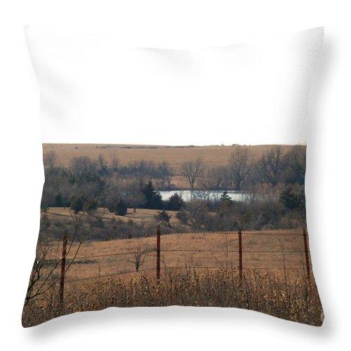 Kansas Throw Pillow featuring the photograph Kansas Lake by Mark McReynolds