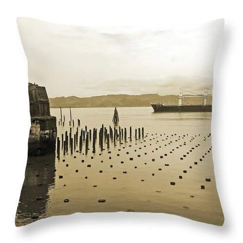 Ocean Liner Throw Pillow featuring the photograph Ken Ryu by Pamela Patch