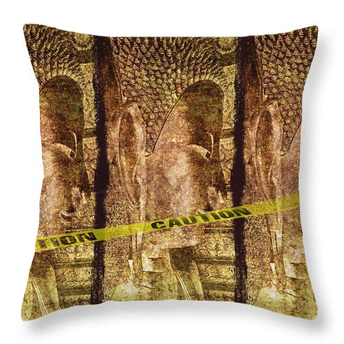 Absence Throw Pillow featuring the photograph Kill The Buddha by Skip Nall