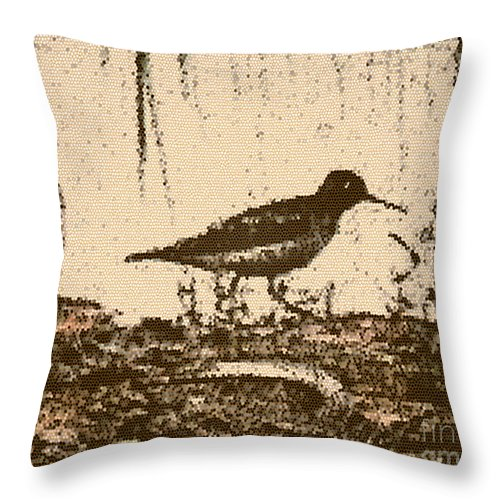 Bird Throw Pillow featuring the photograph Killdeer by Donna Brown