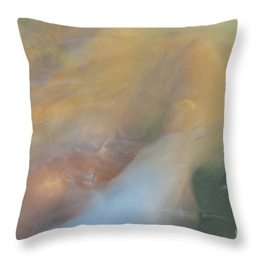Fish Throw Pillow featuring the photograph Koi Fish 01 by Catherine Lau