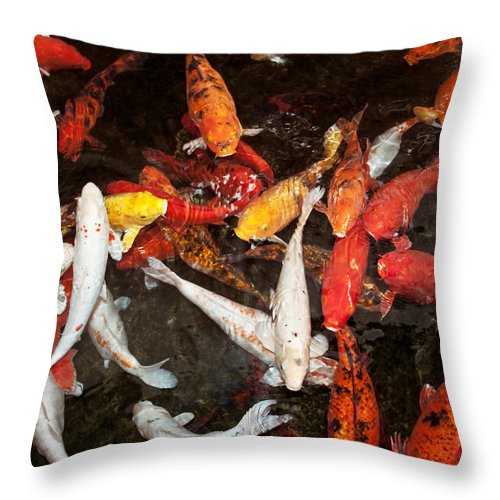 Animal Throw Pillow featuring the photograph Koi Fish Movement Iv by Joe Carini - Printscapes