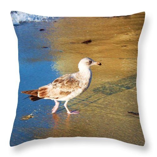 Birds Throw Pillow featuring the photograph La Jolla Local by Caroline Lomeli