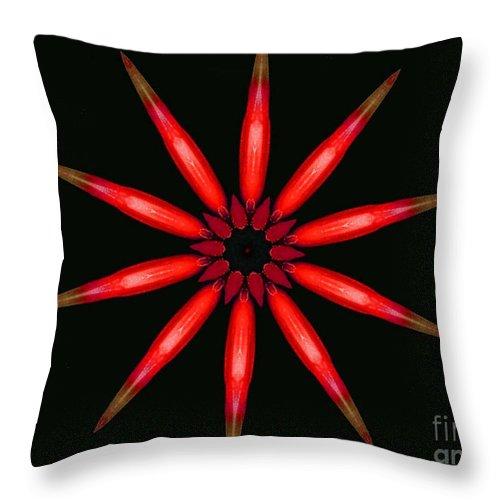 Kaleidoscope Throw Pillow featuring the photograph Lahaina by Mark Gilman