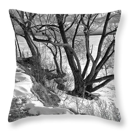 Frozen Lakeshore Throw Pillow featuring the photograph Lakeshore by Burney Lieberman