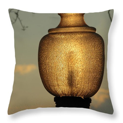 Lamp Throw Pillow featuring the photograph Lamp Light And Limb by Mike Nellums