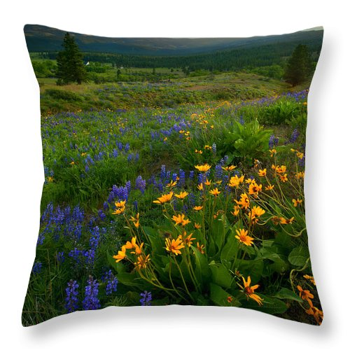 Meadow Throw Pillow featuring the photograph Last Light Over The Wenas by Mike Dawson