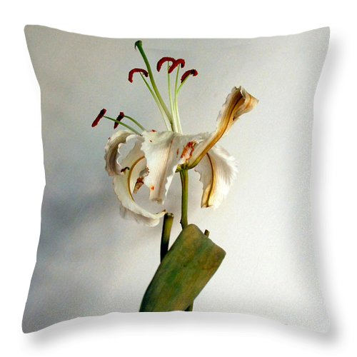 Flowers Throw Pillow featuring the photograph Last Moments by Pravine Chester