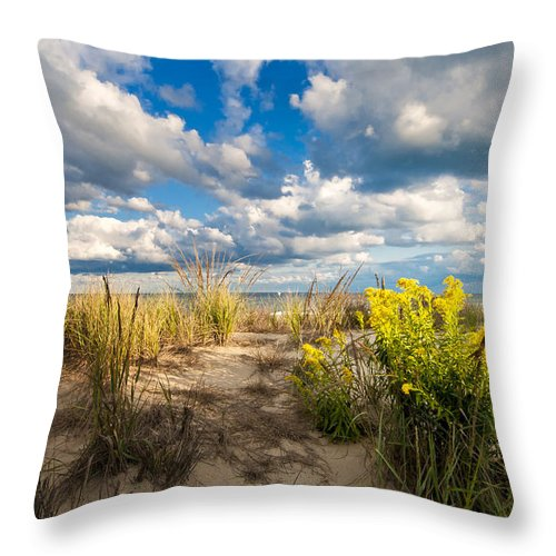 Beach Throw Pillow featuring the photograph Late Summer Dunes Ocean City by Jim Moore