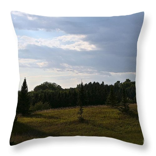 Outdoors Throw Pillow featuring the photograph Late Summer Shadows by Susan Herber