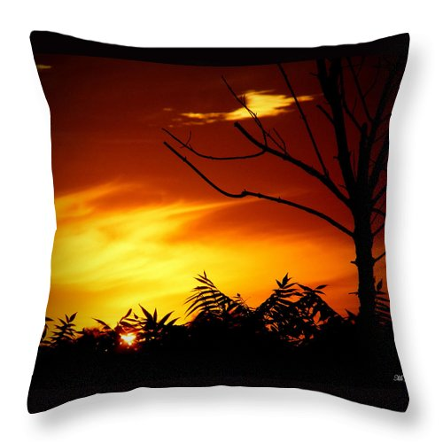 Sunset Throw Pillow featuring the photograph Lava Skies by Ms Judi