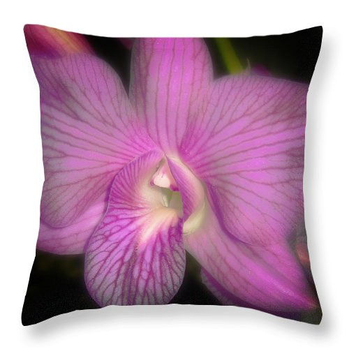 Orchid Throw Pillow featuring the photograph Lavender Orchid by Joseph G Holland