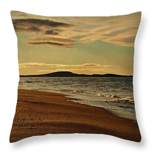 Beach Throw Pillow featuring the photograph Le Promeneur by Claudia Moeckel