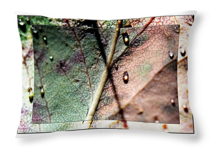 Macro Leaf Print Throw Pillow featuring the photograph Leaf After Rain by Marie Jamieson