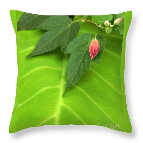 Leaf Throw Pillow featuring the photograph Leaf On Leaf With Red Bud by Mike Nellums