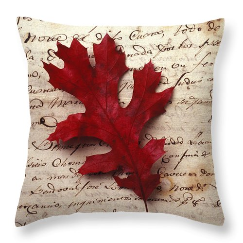 Leaf Throw Pillow featuring the photograph Leaf On Letter by Garry Gay
