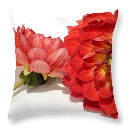 Flower Throw Pillow featuring the photograph Lean On Me by Susan Smith