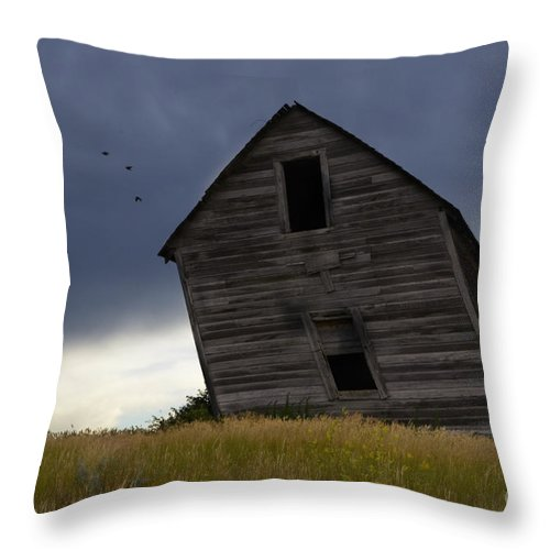 Homestead Throw Pillow featuring the photograph Leaning A Little 2 by Bob Christopher