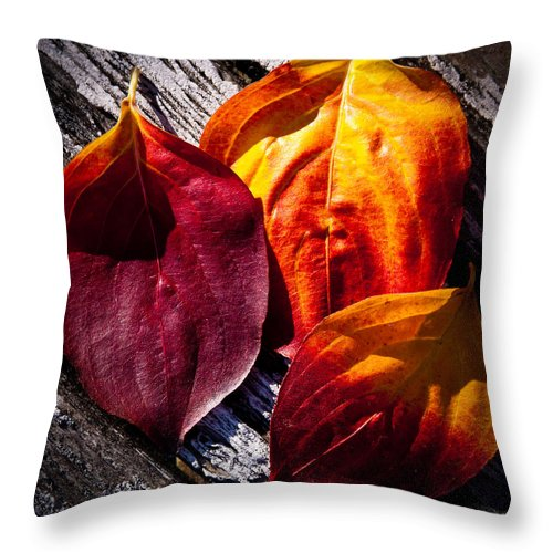 Leaves Throw Pillow featuring the photograph Leaves On The Deck by David Patterson