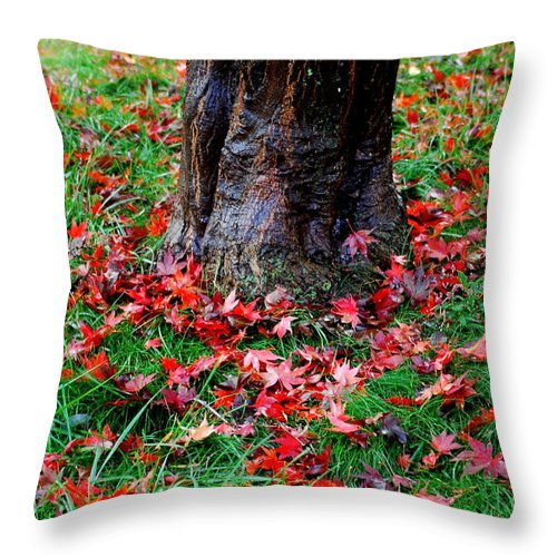 Ditmas Throw Pillow featuring the photograph Leaves On The Ground by Mark Gilman