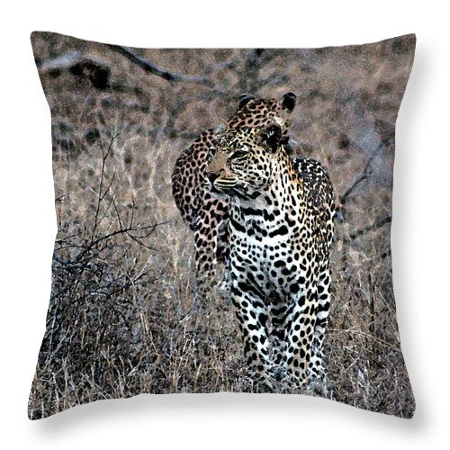 Animal Throw Pillow featuring the photograph Leopard Hunt by Paul Fell