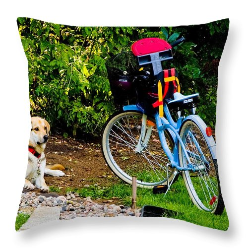 Throw Pillow featuring the photograph Lets Go by Burney Lieberman
