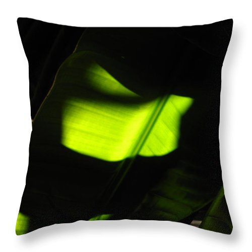 Phil Throw Pillow featuring the photograph Light On Banana Leaves by Phil Penne