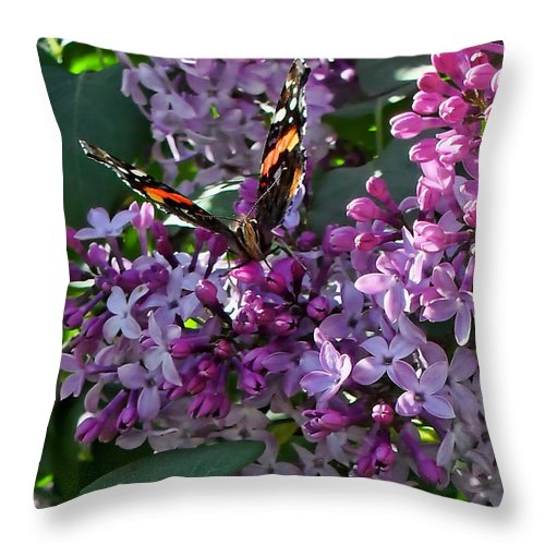 Butterflies Throw Pillow featuring the photograph Lilac Butterfly by Kristie Bonnewell