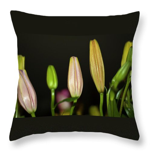 Lilies Throw Pillow featuring the photograph Lilies In A Row by Carolyn Marshall