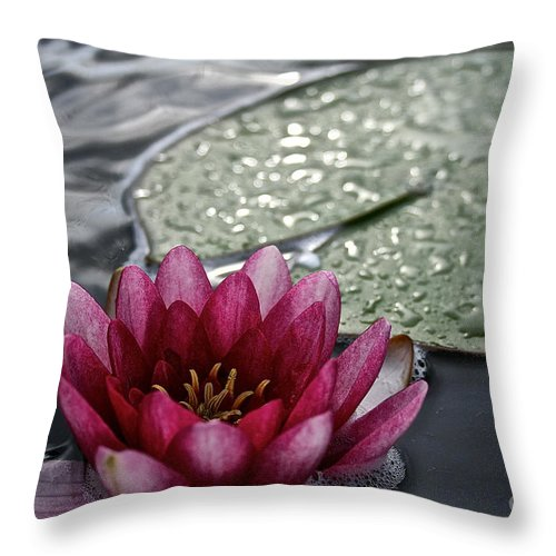 Floral Throw Pillow featuring the photograph Lily And Pad by Susan Herber