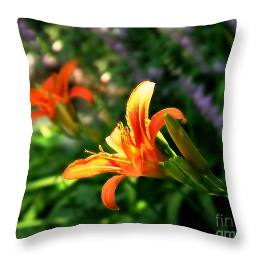 Flower Throw Pillow featuring the photograph Lily by Perry Webster