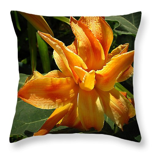 Lily Throw Pillow featuring the photograph Lily Survival by Joyce Dickens