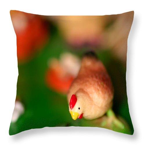 Bird Throw Pillow featuring the photograph Little Chicken by Henrik Lehnerer