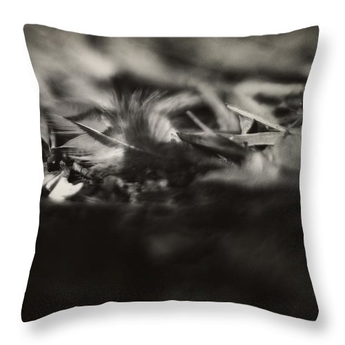 Feather Throw Pillow featuring the photograph Little Feather Lost by Rebecca Sherman