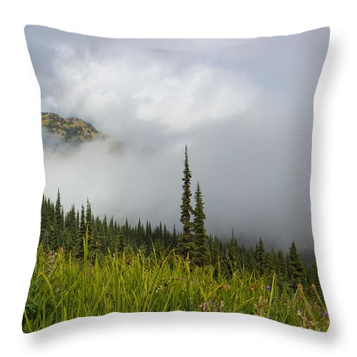 Clouds Throw Pillow featuring the photograph Little Slice Of Heaven by Heidi Smith